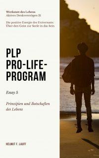 PLP-5-Essay Prinzipien